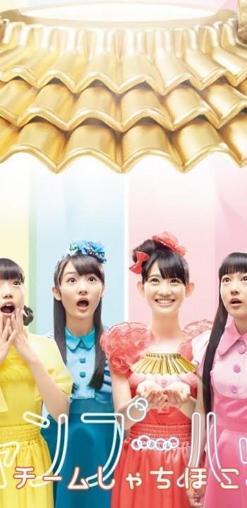 news_header_teamsyachihoko_shampoohat_limitednagoya_jkt